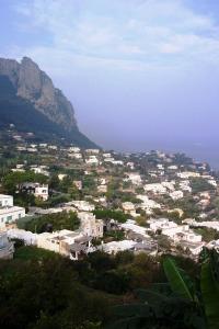 Capri 11-1-05 05