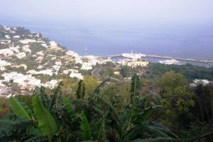 Capri 11-1-05 06